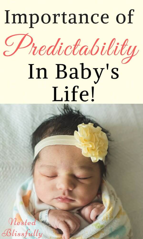 Importance of Predictability in a baby's life.