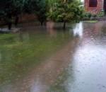 465593_batajnica-poplava1-foto-z-lazarevic_kf
