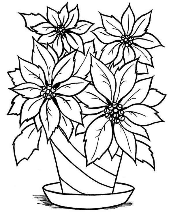 Blooming Flower in the Vase Coloring Page - NetArt | colouring pages flowers in a vase