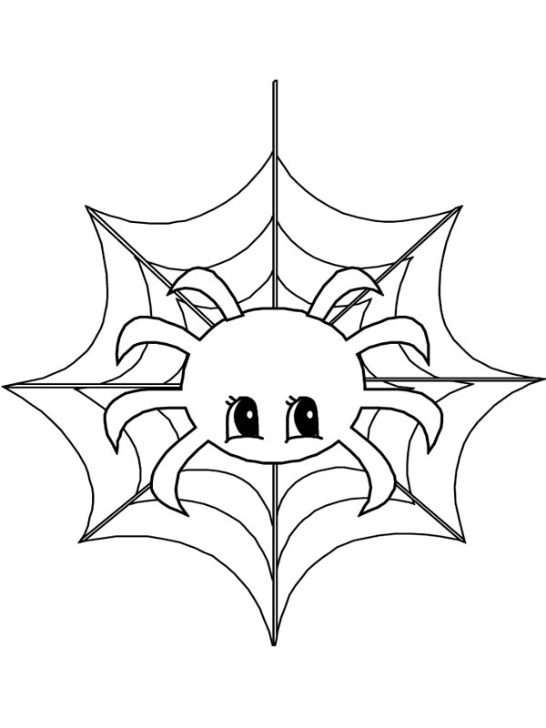 cute little spider on spider web coloring page netart
