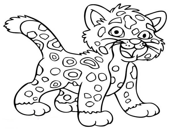little baby cheetah coloring page netart