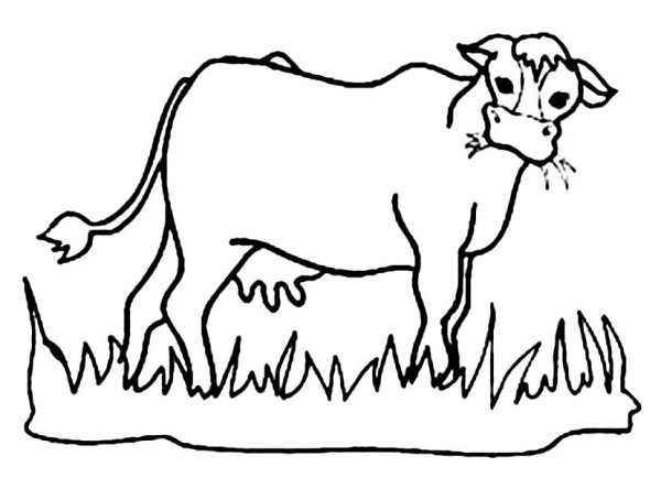 tall grass coloring page grass coloring pages spring coloring