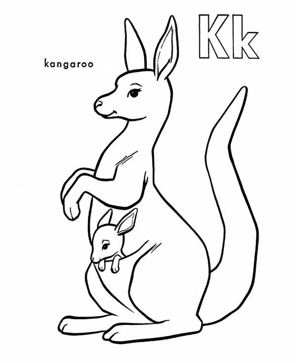 baby kangaroo coloring page here home kangaroo kangaroo carrying baby