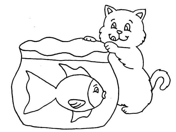 cat try to catch fish in fish tank coloring page netart