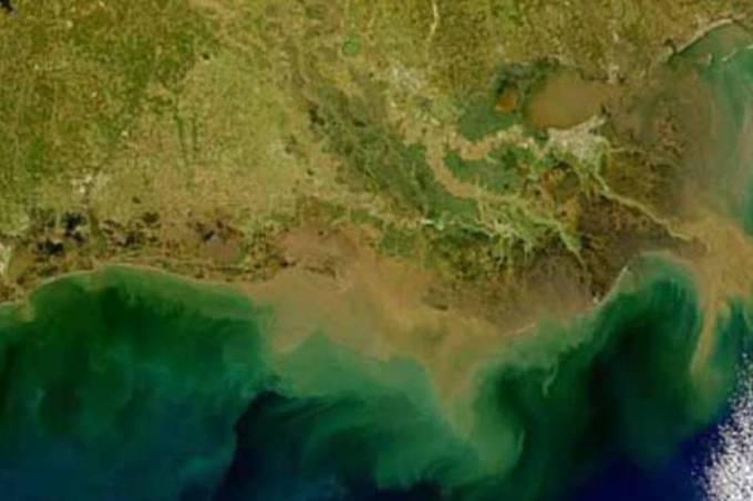 162267326694 Zonas muertas Regiones oceánicas con reducción