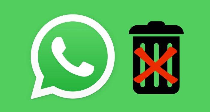 WhatsApp no eliminará su cuenta si no está de acuerdo con sus términos de servicio.