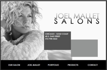 Salon web site