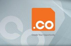 Register your .CO domain name now.