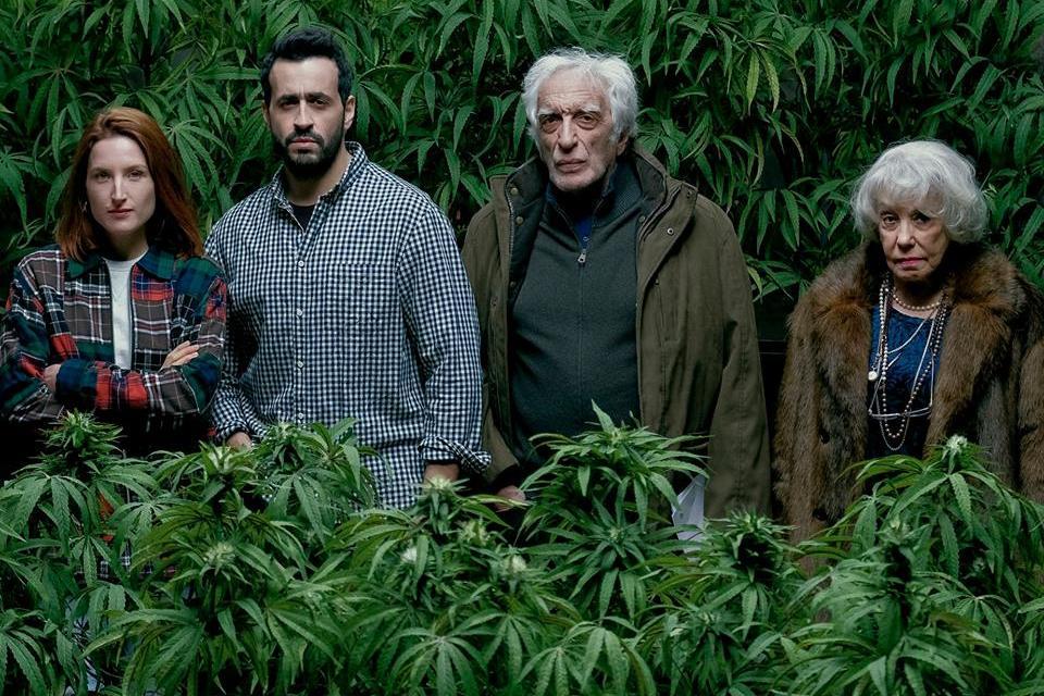 Family Business : la comédie française arrive bientôt sur Netflix
