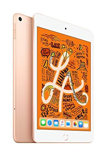 iPad-mini-Wi-Fi-Cellular-256GB-Or-0-0