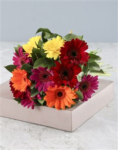 Buy Gerberas and Flowers Online   Netflorist  Same Day Delivery flowers  Glorious Gerberas