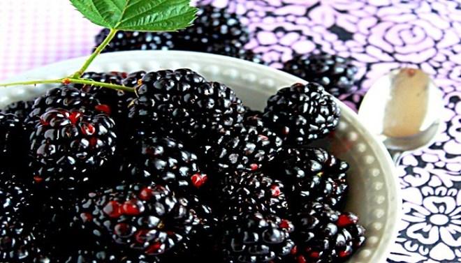 Blackberry juice-Netmarkers