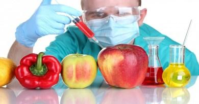 GMO foods-Netmarkers