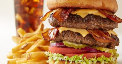 Cheeseburger with chipotle ketchup-Netmarkers