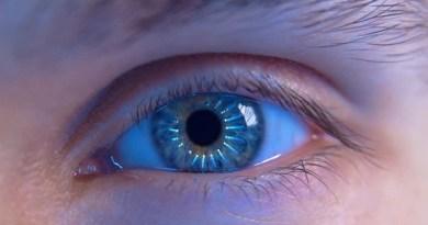 human eye-Netmarkers