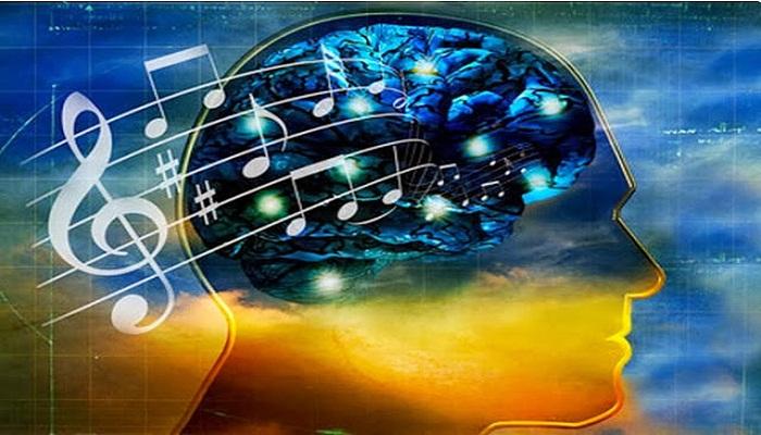 music-brain-Netmarkers