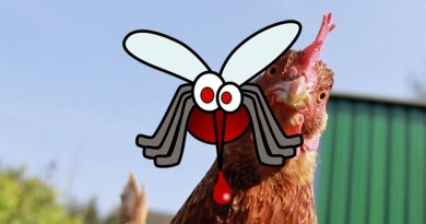 Chickens-and-mosquitoes-Netmarkers