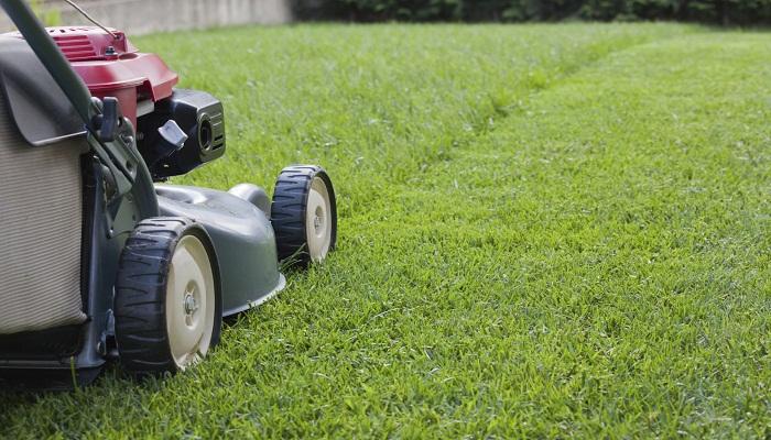 grass-cutting-Netmarkers