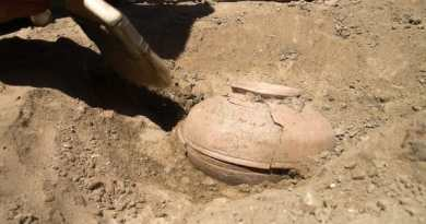 Amazing content found in this 800 year old pot- Netmarkers