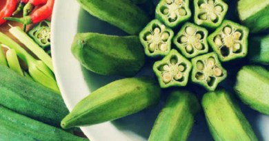 okra for depression-Netmarkers