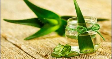 extract-aloe-vera-gel-saggy-skin-netmarkers