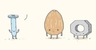 nuts-netmarkers-jpg-large