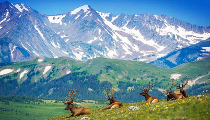 Rocky Mountains, Colorado-Netmarkers
