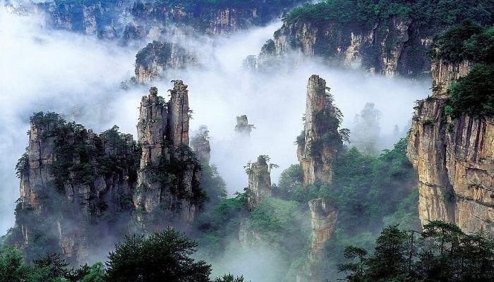 4. Tianzi-netmarkers