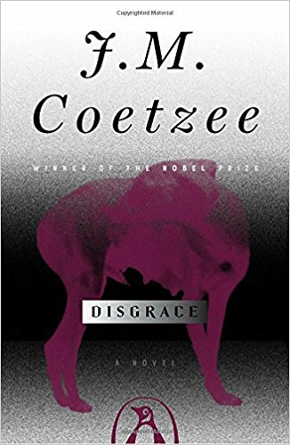 Disgrace book cover-Netmarkers