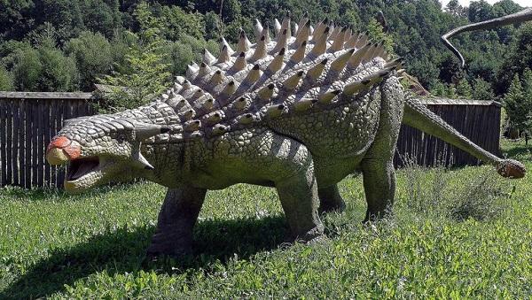 Ankylosaurus-netmarkers