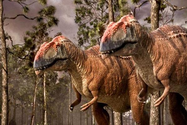 Mapusaurus-netmarkers
