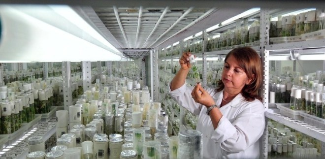 For preserving rich bio-diversity-netmarkers