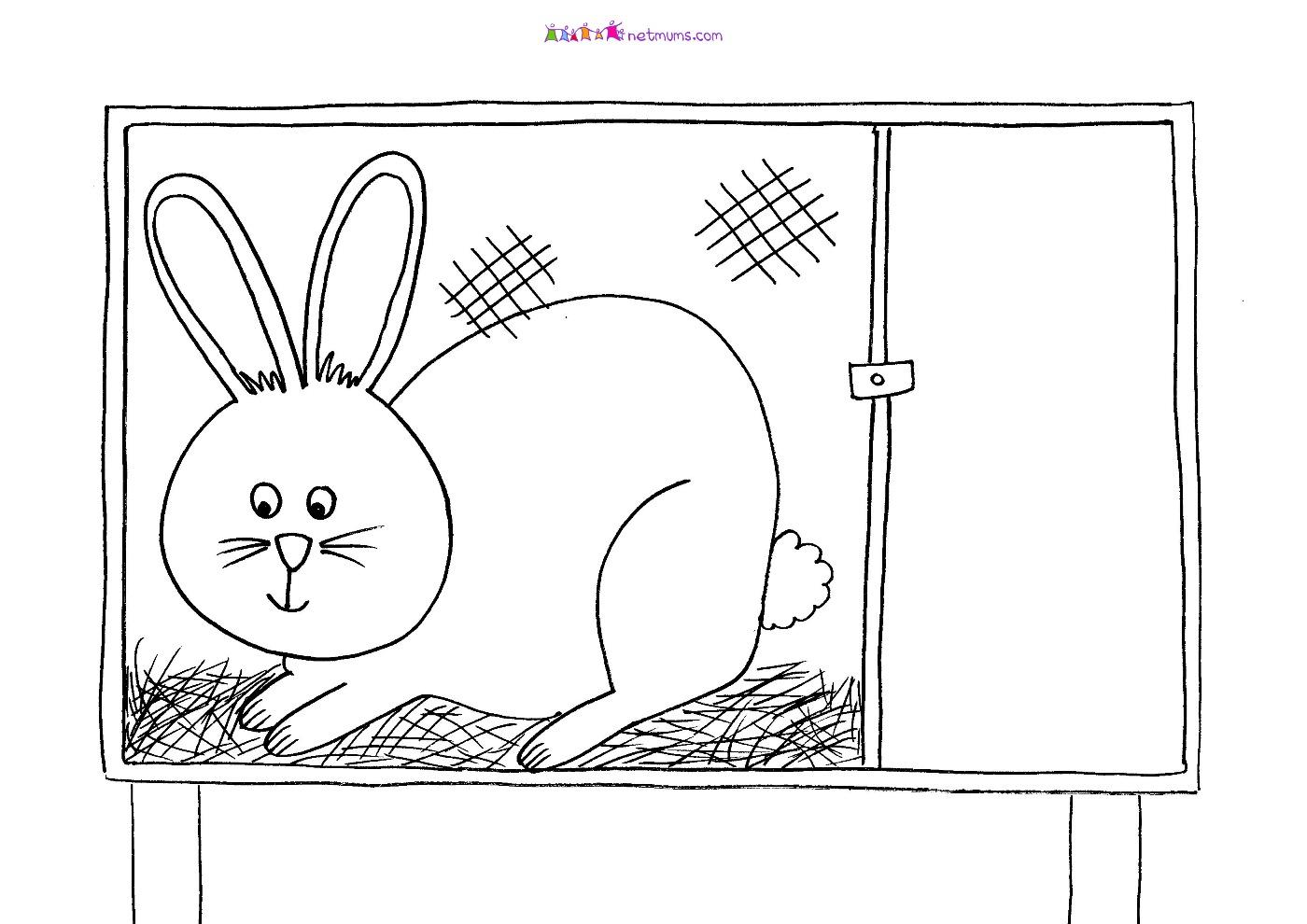rabbit hutch rabbit pictures to print amp colour netmums