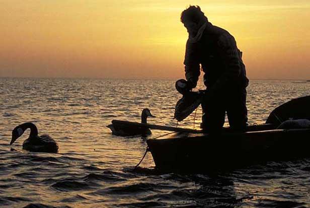 Fuglekiggere sikre vindere