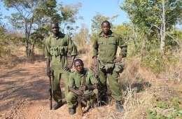 Zimbabwe: Travlhed for anti-krybskytte-rangers