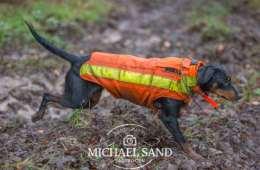 Tilskud til bidsikre hundeveste