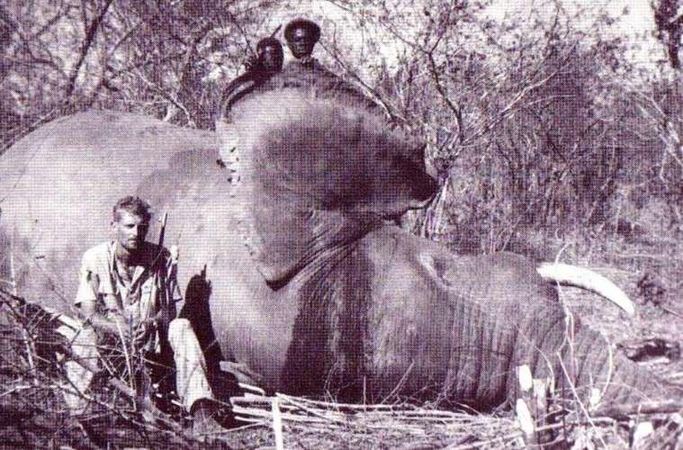 Historie: Den sidste elefantjæger i Afrika