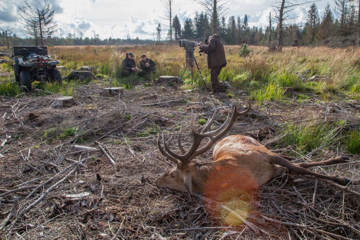 Administrator af hjortegruppe opfordrer til boykot af kæbeindsamling