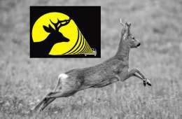 Stop Dyr: En dyrealarm, der kan holde hjortevildt af vejen