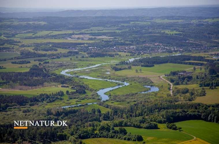 Vådområder fjerner 150 ton kvælstof