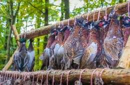 Reglerne for jægeres salg af vildt