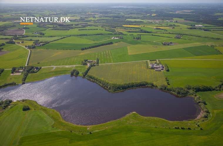 DN gør status over regeringens naturbeskyttelse