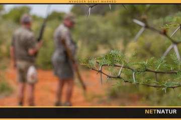 Guide til valg af jagtrejseudbyder