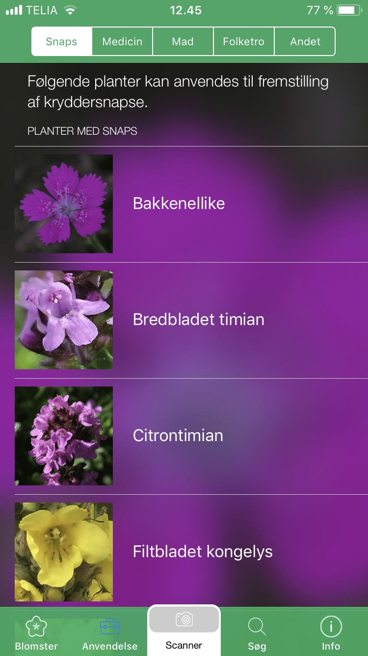 Ny app som kan genkende planter og blomster