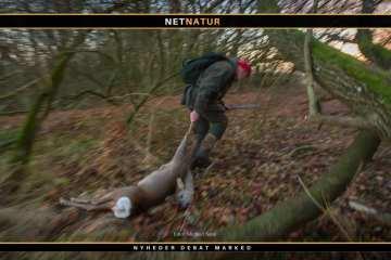 Fransk jagttegn - sådan gør du