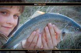 Lokale regler for fiskeri i saltvand