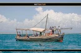 FN's miljøforsamling i Kenya ser på plastik i verdenshavene