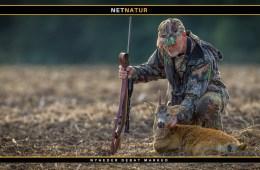 Bly og jagt med riffel