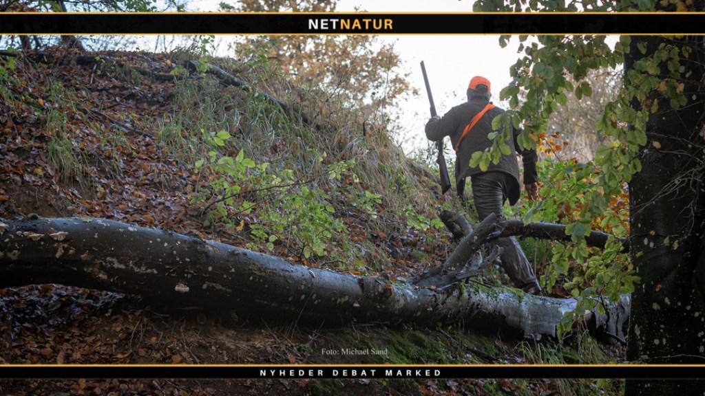 Biodiversitet og jagt