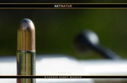 Historie: De første kugler med kappe